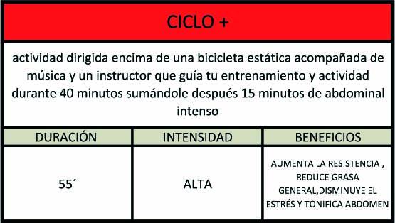 cicloplus